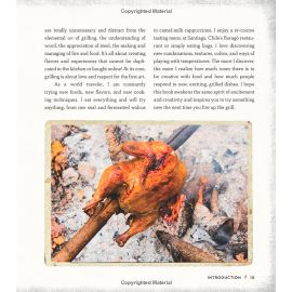 Grill Fire 100+ Recipes & Techniques for Mastering the Flame, Lex Taylor - 6